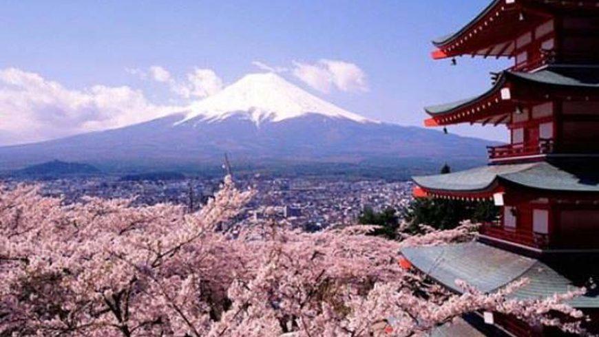 Как разбрах защо обичам Корея и Япония