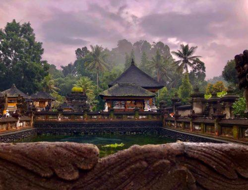 ИНДОНЕЗИЯ – острови Kомодо, Флорес и Бали